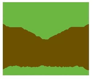HealthyMaineSt_300x257