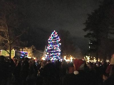Brunswick Downtown Christmas Tree