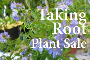 Taking Root Plant Sale Brunswick