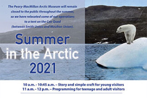 Summer in the Arctic 2021
